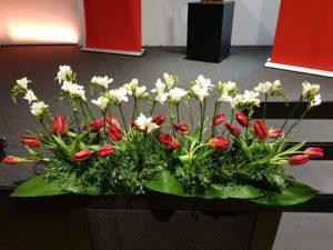 Frühling Tulpen meets Fresien
