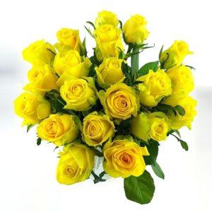 20 gelbe Rosen