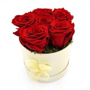 Rosenbox rot 6x Ewige Rose