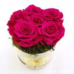 Ewige Rosen 6er Pink