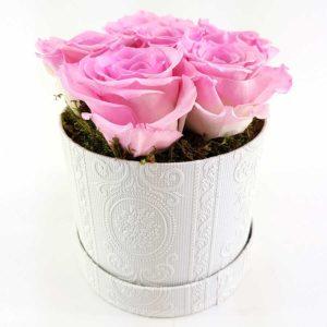 Ewige Rosen 6er Rosa