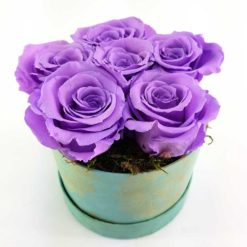 Ewige Rosen Lilia