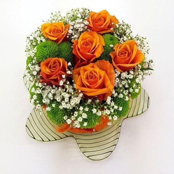 Rosenmuffin Orange Blüte