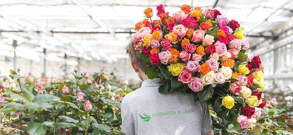 Heimische Blumen Rosen Wallner