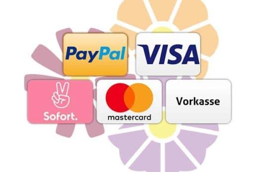 Übersicht Zahlungsarten Webshop1