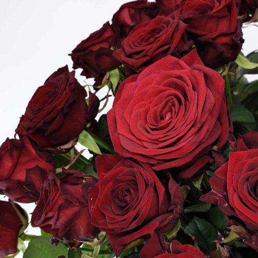 Rosen Red Naomi Detail