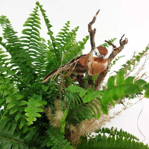 Pflanzkopf Rosa Farn Vogel Detail
