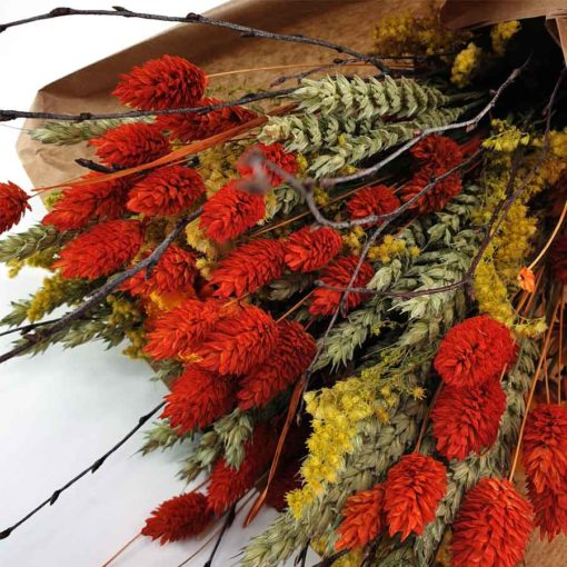 Trockenblumen Orange Detail