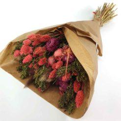 Trockenblumen pink